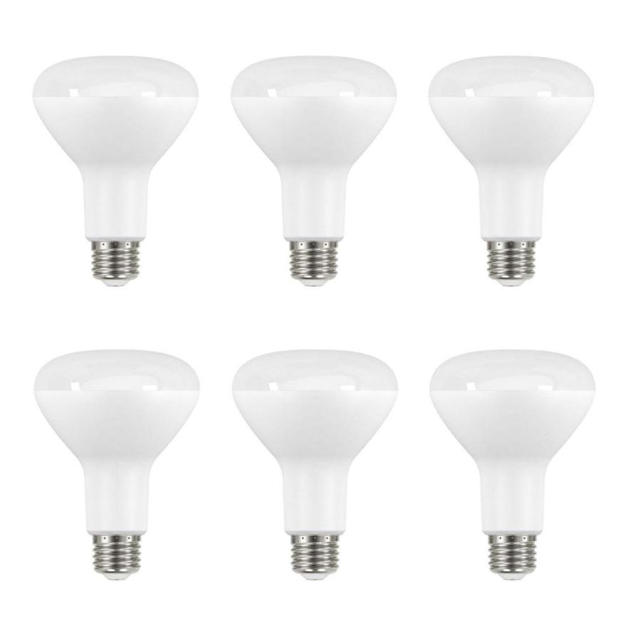 6 Pack 65-Watt Equivalent BR30 Dimmable LED Light Bulb.jpg