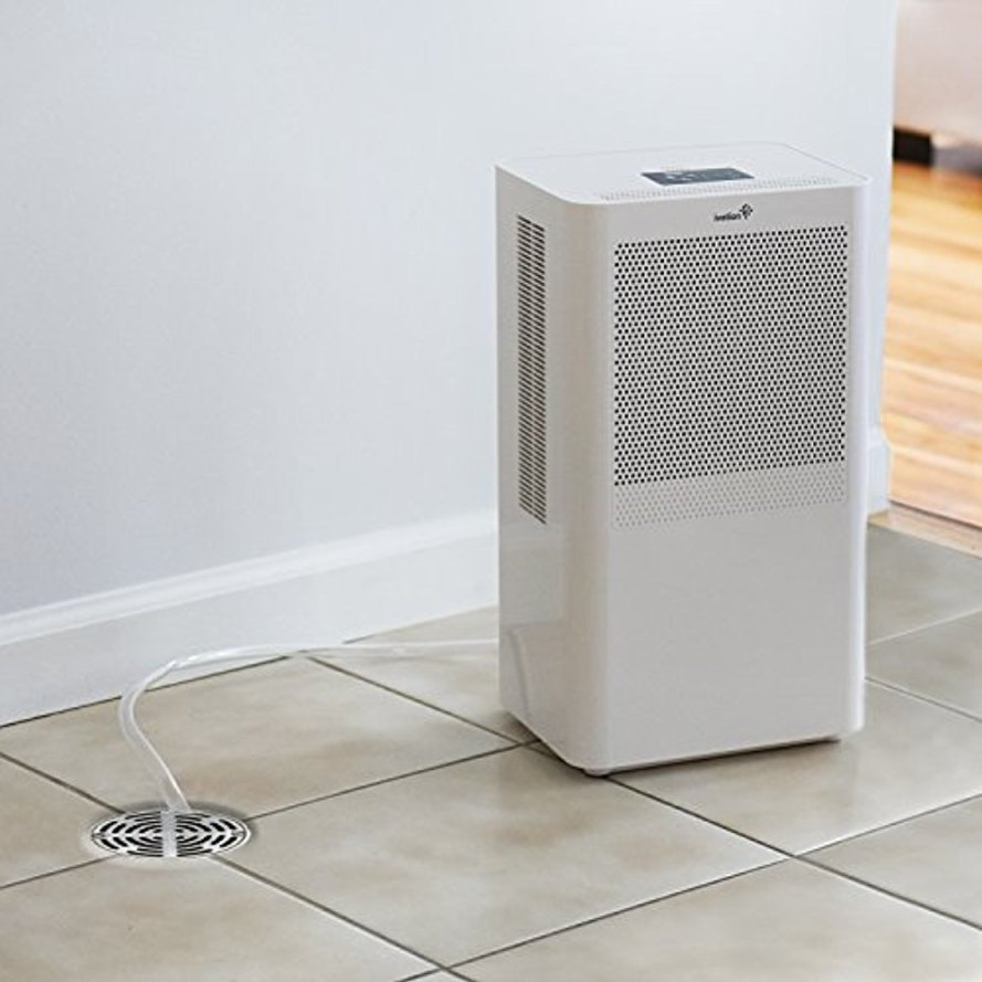 Ivation Compact Dehumidifier.jpg