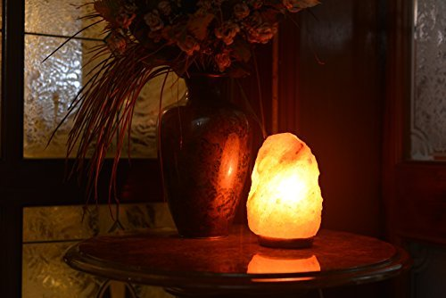 HemingWeigh Natural Himalayan Rock Salt Lamp 6-7 lbs with Wood Base.jpg